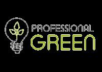 Profesional Green Torrellano